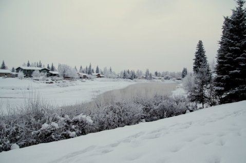 View of Chena River from Deck